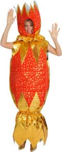 Cracker Fancy Dress Costume