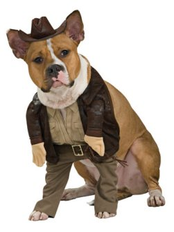 Indiana Jones Fancy Dress Costume For Dogs