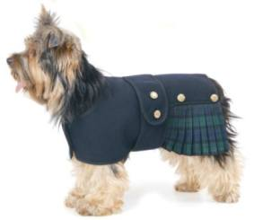 Kilt / Scottish Fancy Dress Costume For Dogs