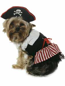 Fancy Dress Clothes For Dogs