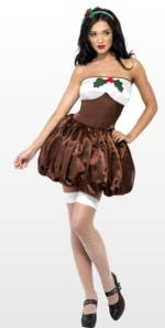 Sexy Christmas Pudding Fancy Dress Costume